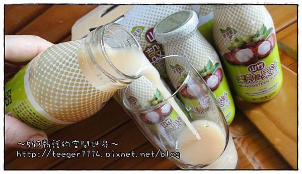 山竹果汁9