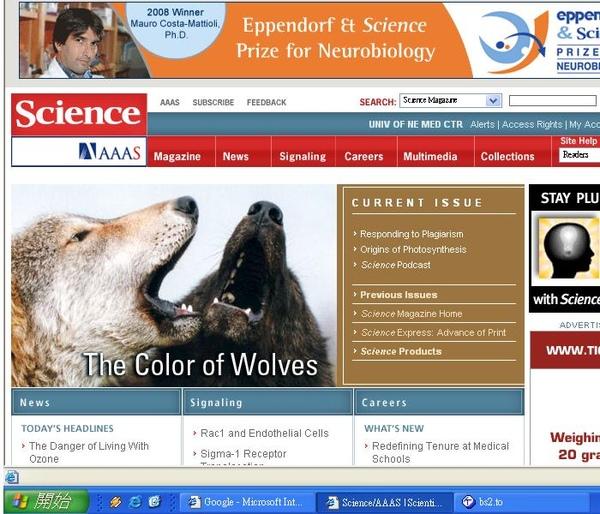 這期Science的封面