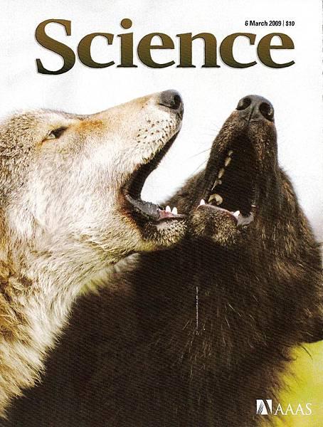 Science 323(5919)封面