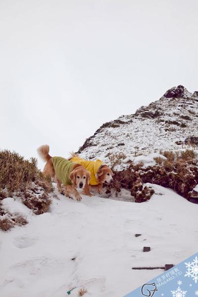 snow031.jpg