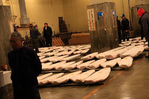SJShih_201302_Tokyo_1529