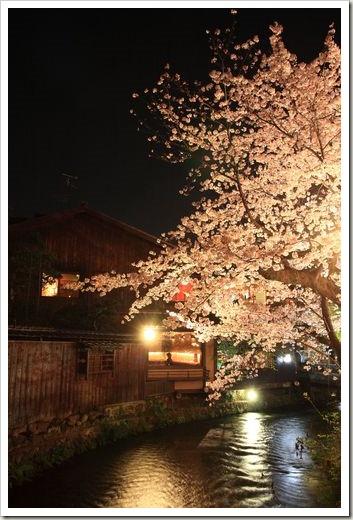 SJShih_201304_Kyoto_0060
