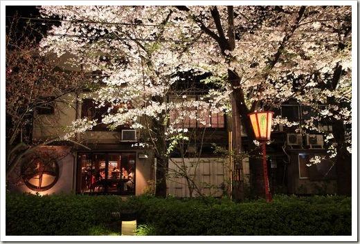 SJShih_201304_Kyoto_0037