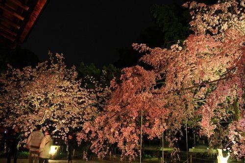 SJShih_201304_Kyoto_0328