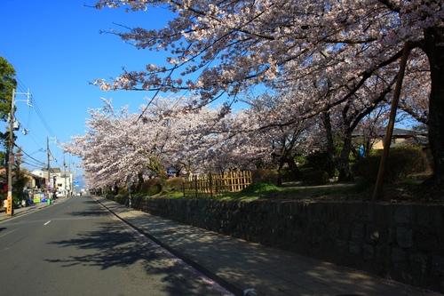 SJShih_201304_Kyoto_0094.JPG