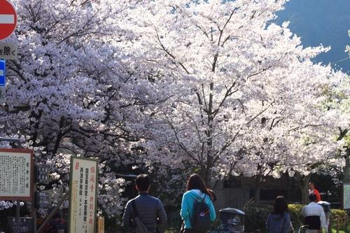 SJShih_201304_Kyoto_0104.JPG
