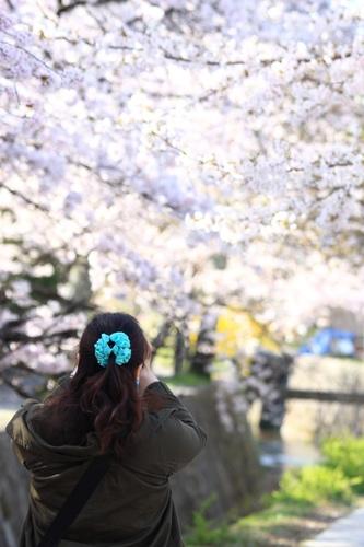 SJShih_201304_Kyoto_0116.JPG