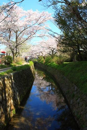SJShih_201304_Kyoto_0146.JPG