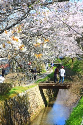 SJShih_201304_Kyoto_0147.JPG