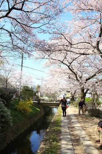 SJShih_201304_Kyoto_0156.JPG