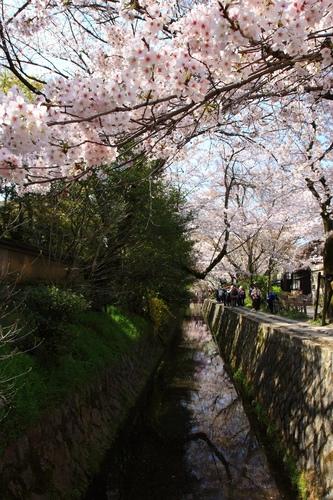 SJShih_201304_Kyoto_0164.JPG