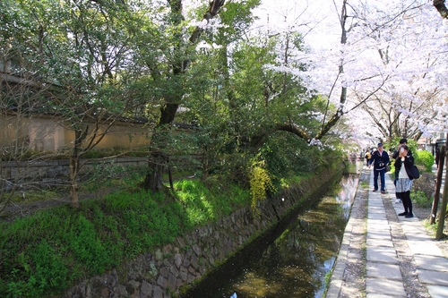 SJShih_201304_Kyoto_0166.JPG