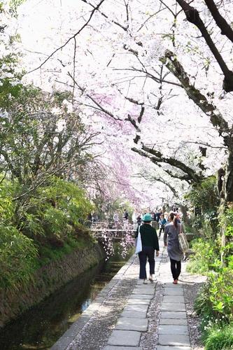 SJShih_201304_Kyoto_0170.JPG
