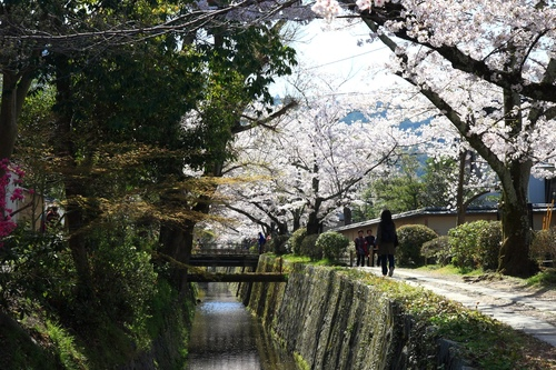 SJShih_201304_Kyoto_0182.JPG