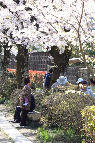SJShih_201304_Kyoto_0188.JPG