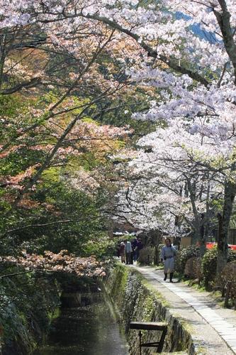 SJShih_201304_Kyoto_0189.JPG
