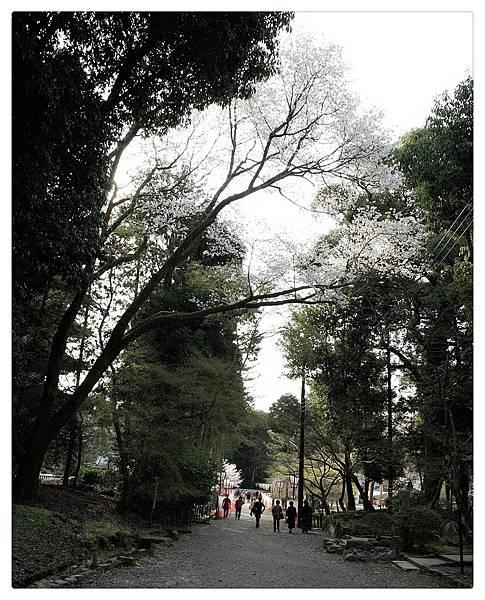SJShih_201304_Kyoto_0300_美图.jpg