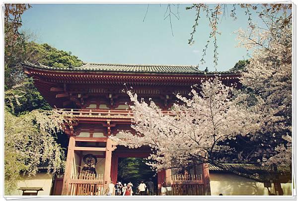 SJShih_201304_Kyoto_0280_美图.jpg