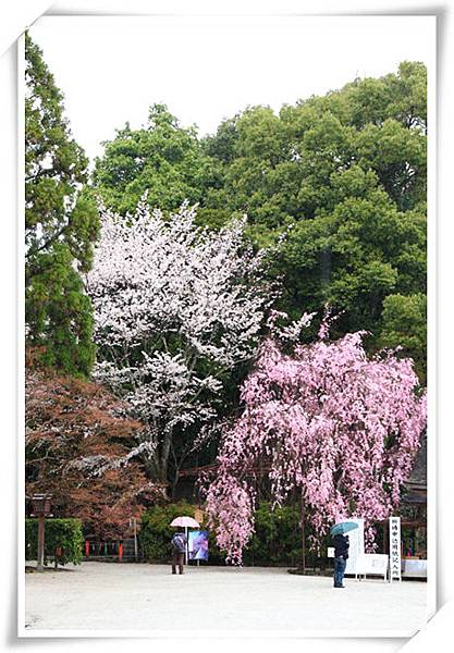 SJShih_201304_Kyoto_0368_副本.jpg