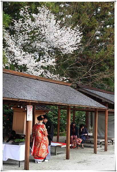 SJShih_201304_Kyoto_0369_副本.jpg