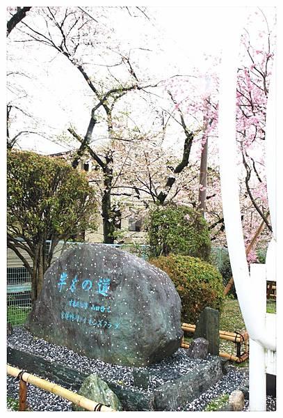 SJShih_201304_Kyoto_0407_美图.jpg