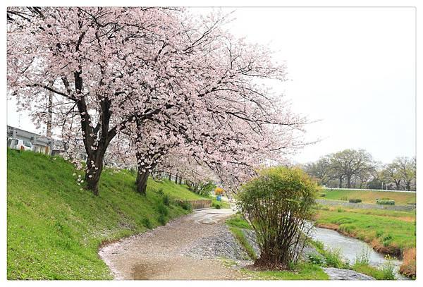 SJShih_201304_Kyoto_0372_美图.jpg