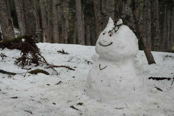 雪山美景 (11).bmp