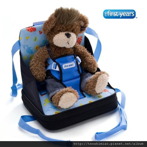 first year toddler seat