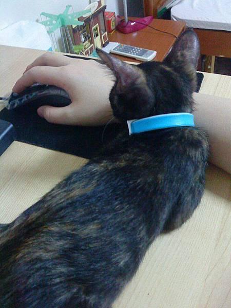 2011-07-12愛哭愛對路.jpg