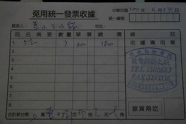 2011-07-29PUMA_5.jpg