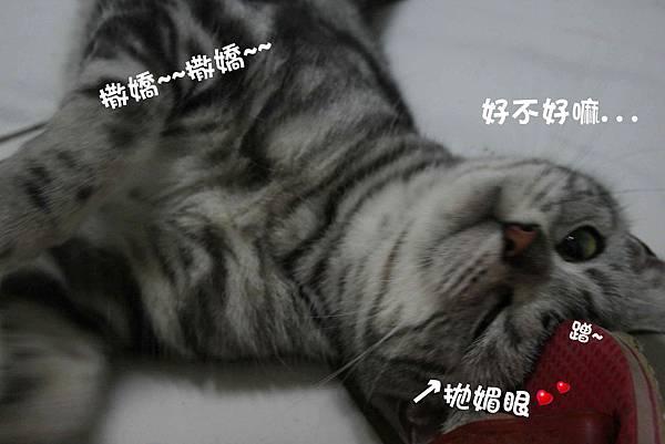 2011-10-04俏妞_05-1.jpg