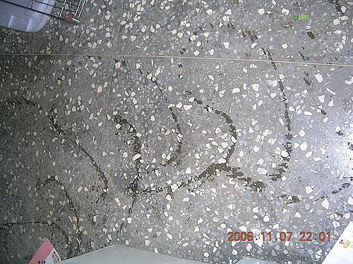 2006-11-07S型的尿.jpg