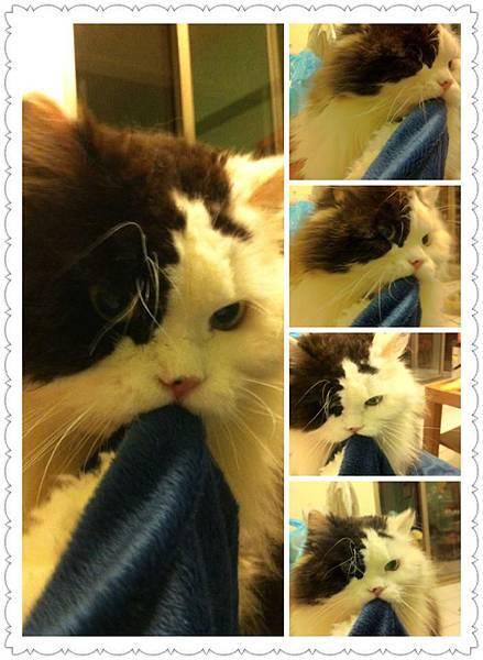 2012-03-12yuki的新照片