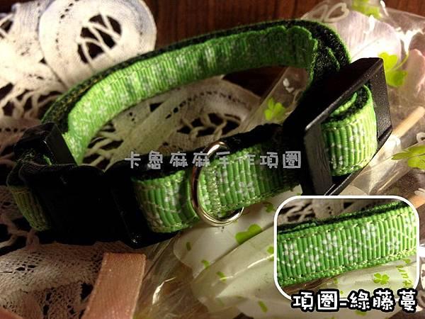 項圈-綠藤蔓