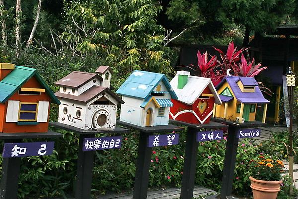 2010-01-04薰衣草森林_154_2.jpg