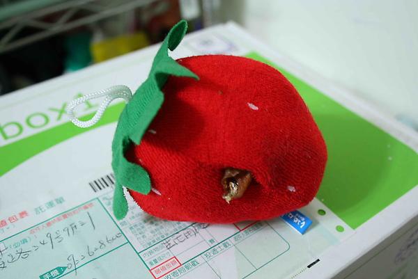 2009-06-10布製玩具