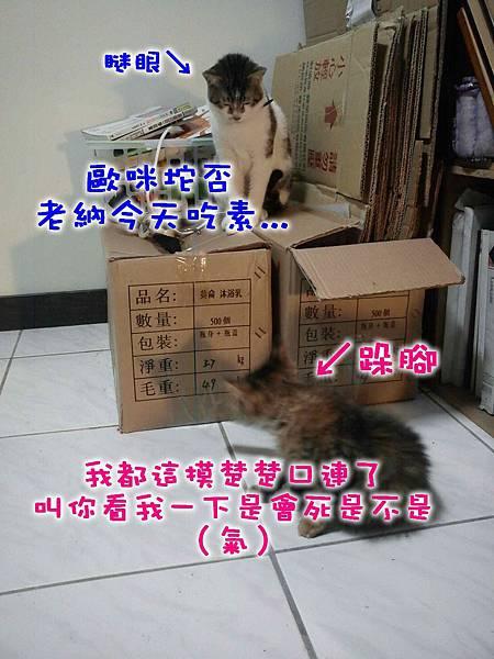2011-04-06Money的和尚臉.jpg