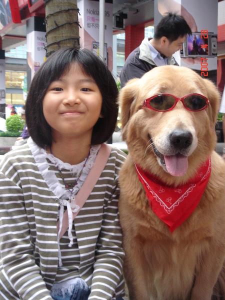 我們最愛的黃金獵犬合照