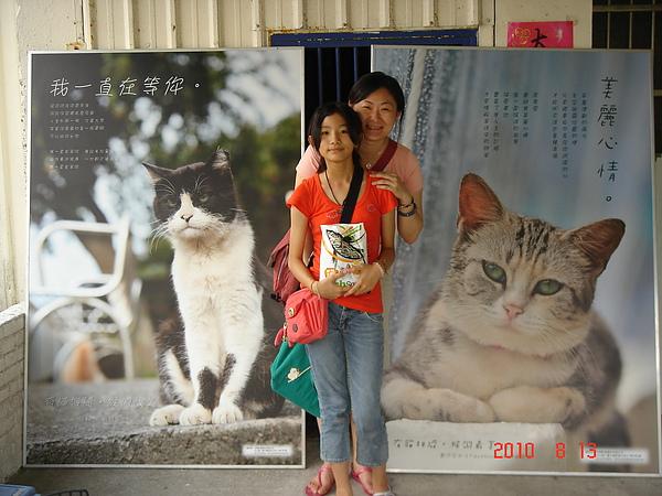 快樂的貓村