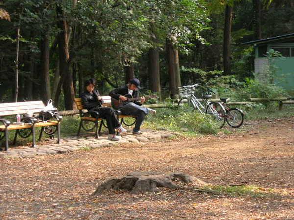 這裡的年輕人也好悠閒...就在公園彈吉他唱歌