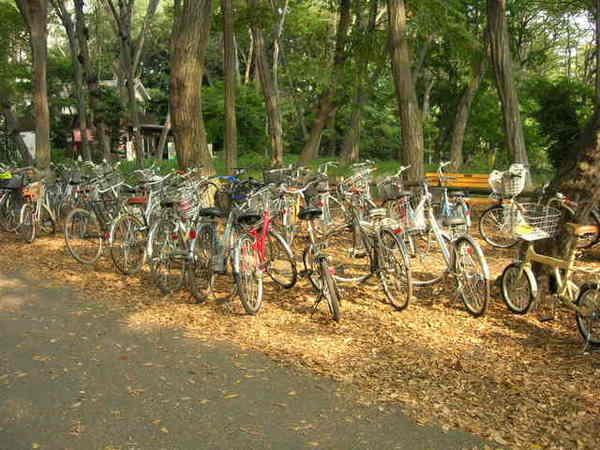 日本人的主要交通工具好像是電車跟腳踏車