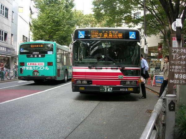 街上公車亮晶晶...看了就想跟上車