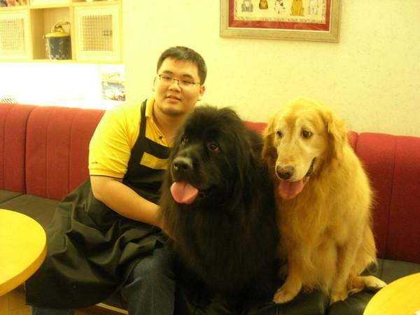 紐芬蘭大黑狗好大...好像大黑熊啊...可是他很溫柔