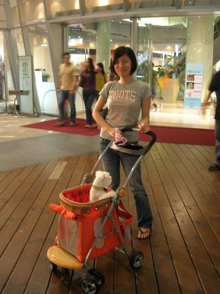 人家推嬰兒車...我推寵物車