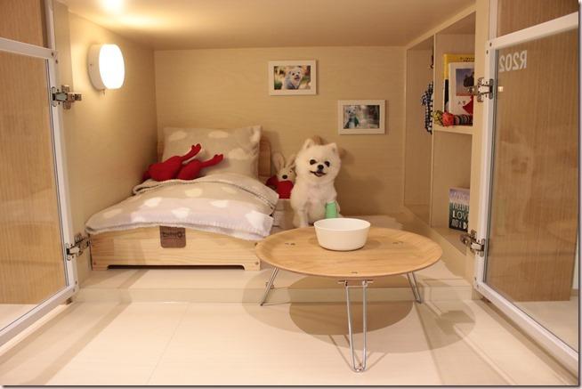 每晚房價NT2,000