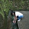 山裡隨便一條水溝裡的水...都乾淨又清涼