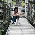 吊橋太可怕了...我們都不敢走過去