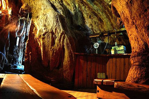 6000-year-old-hollowed-tree-bar-inside-29986.jpg