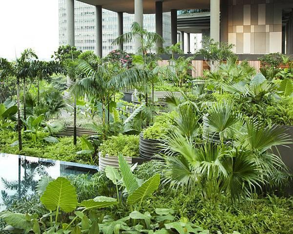 新加坡皇家公園酒店07.jpg