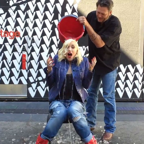 Gwen Stefani ice bucket.jpg